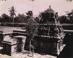 North elevation of the sanctuary of the Ghritapuresvaraswami Temple, Tillaisthanam, Thanjavur District
